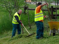 Lavori socialmente utili, lavori di pubblica utilità, manutenzione del verde urbano, pulizia