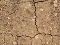 Siccità, caldo, terra secca