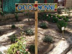 L'orto dei nonni a San Benedetto del Tronto