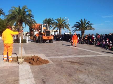 Festa dell'Albero a Grottammare